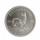 Krugerrand Silver (25 minimum)